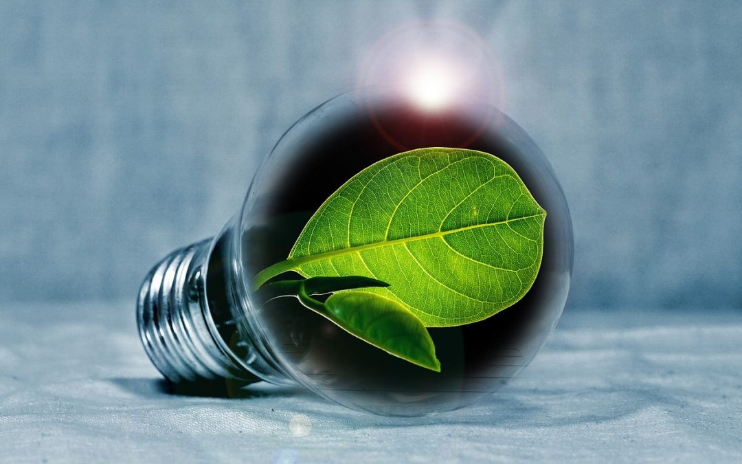 The end of halogen Lamps and the rise of energy cost. What does this mean to your School?